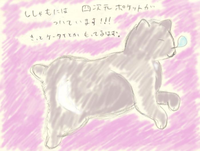 四次元ポケットのある猫