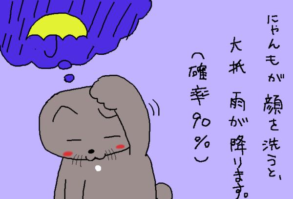ネコが顔を洗うと雨が降る