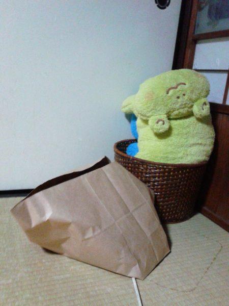 紙袋に入るさび猫その2