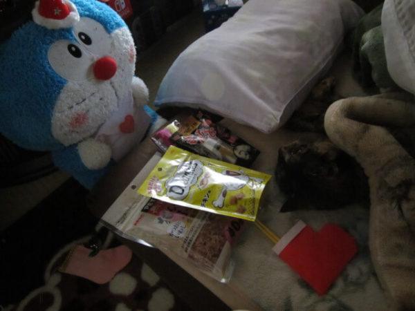 我が家の猫たちにサンタさんからのプレゼント