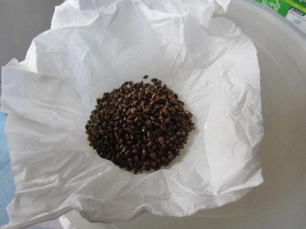 田舎暮らし実践。自家製健康マメ茶を作ります