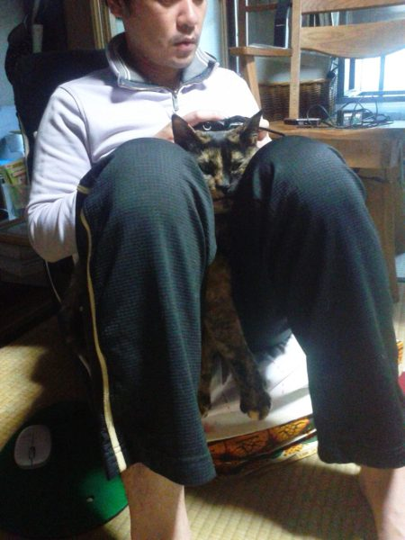 父ちゃんの股の間に挟まるさび猫しめじ