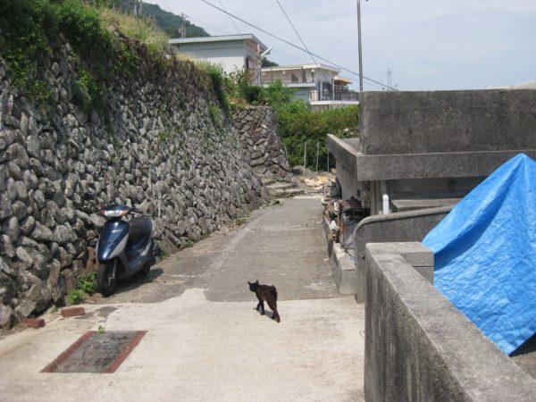 猫島・祝島に行った時の写真