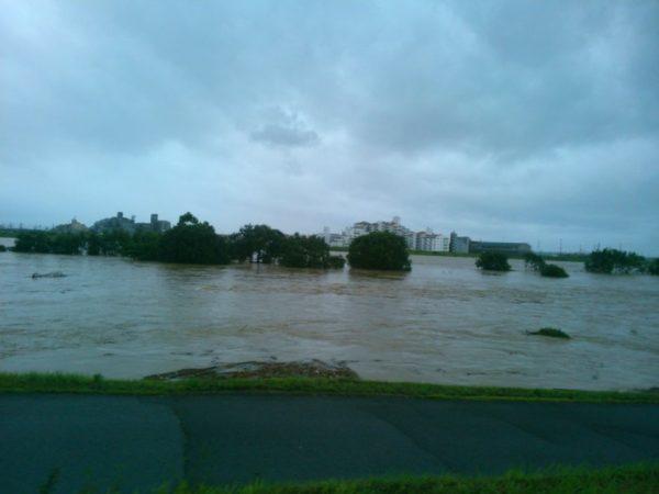 西日本豪雨災害、近所の一級河川の様子、河川敷の木が水浸し