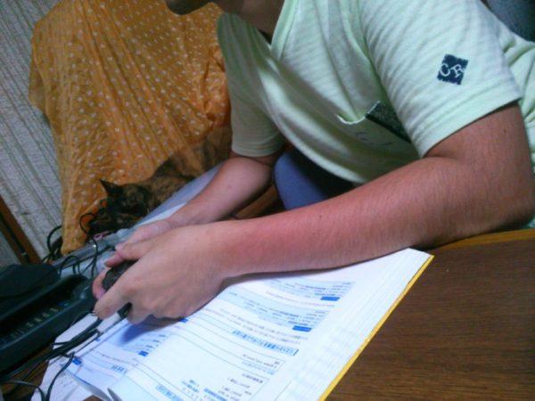 父ちゃんの勉強のジャマをするサビ猫しめじ