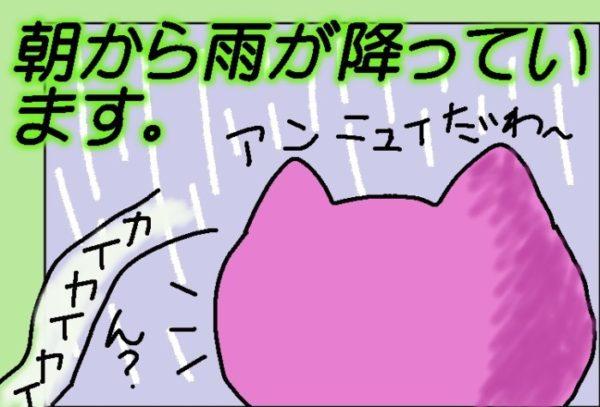 雨の日曜日。