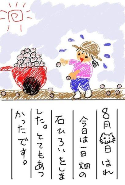 新規就農の思い出【真夏の石拾い】
