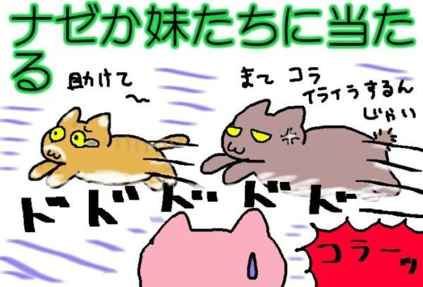 灰色猫ししゃものお気に入りプレイス