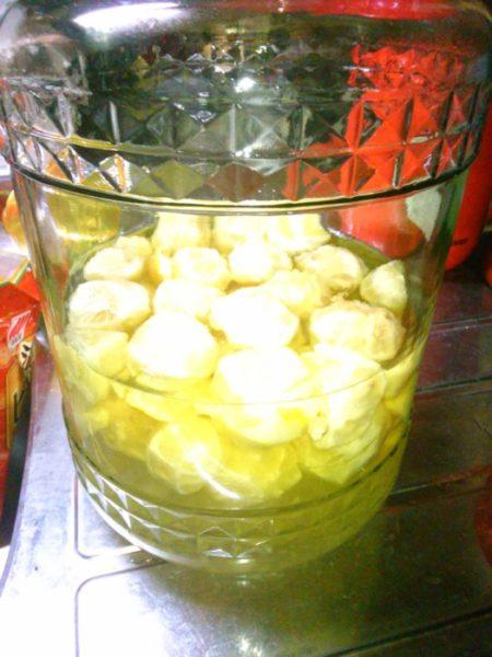 秋の果実酒造ります【柚子+スダチ酒とマタタビ酒】