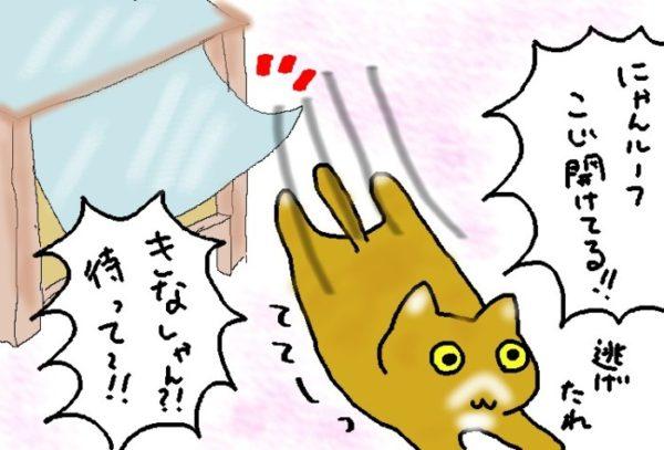 きなこ色のノラ猫