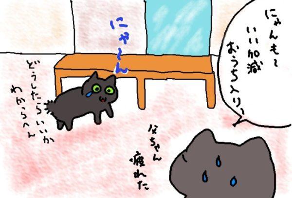灰色猫ししゃもの逃避行⑤~絶妙なタイミング~