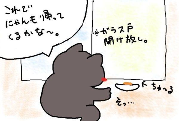 灰色猫ししゃもの逃避行③~ちゅ~るでおびき寄せる~