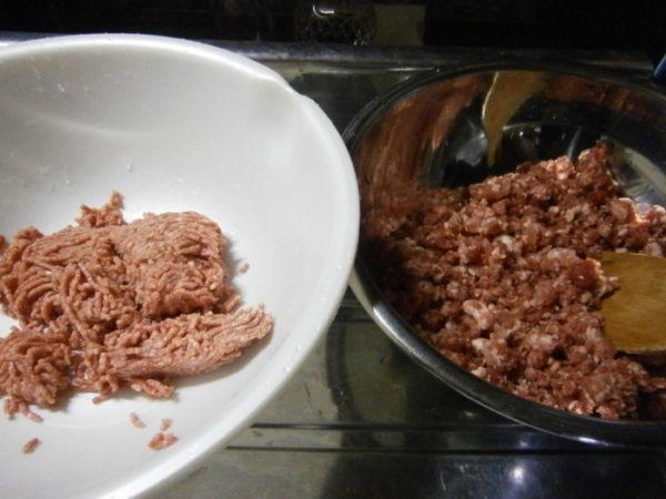 お正月に餃子パーティー【プランターで栽培したネギを美味しく食べる】