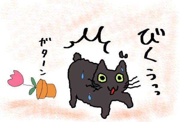 灰色猫ししゃもの逃避行②~勝手にパニック~