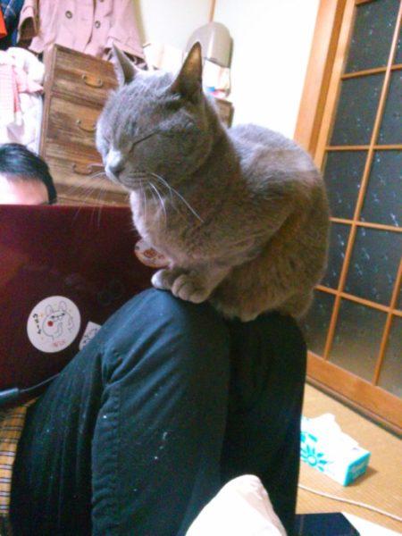 猫背矯正サポーターがスゴイという話