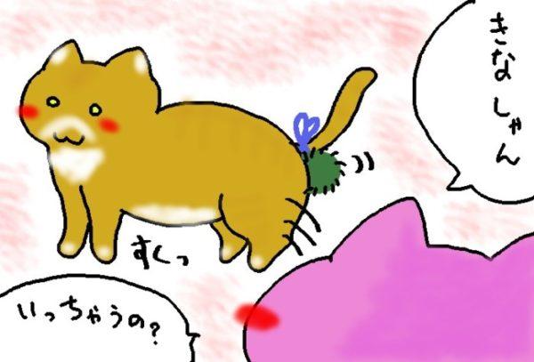 黄色猫きなこにうさぎ尻尾つけてみたら。