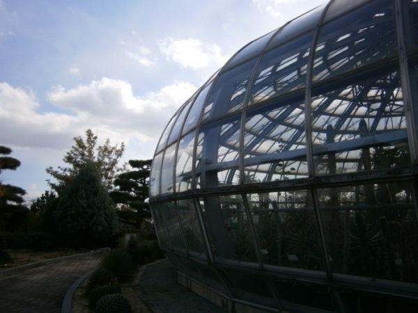 手柄山温室植物園でまったり散歩