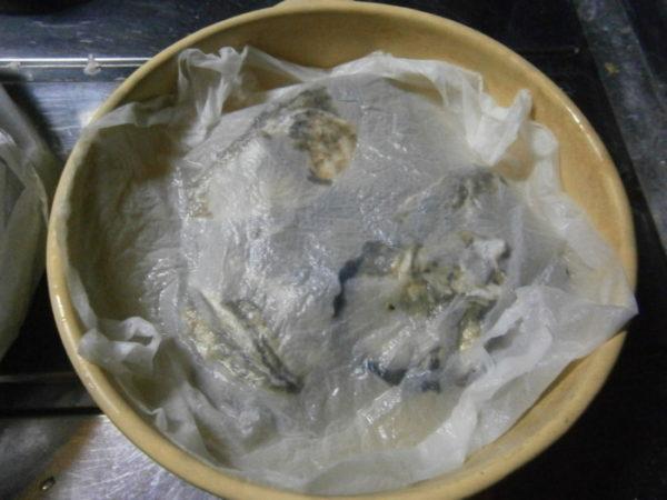 春の牡蠣をいただきました【レンジで蒸し牡蠣】