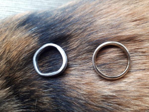 ぷっこ家の指輪物語
