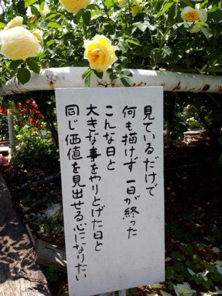 姫路ばら園に行ってきた。