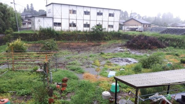豪雨の南九州の実家の庭がちょっとした池化