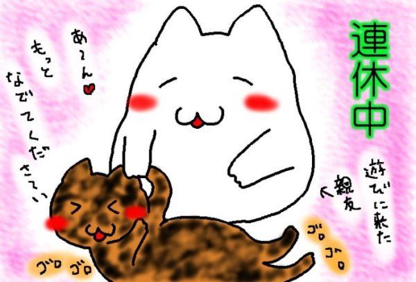 犬並みに人懐っこいサビ猫しめじ