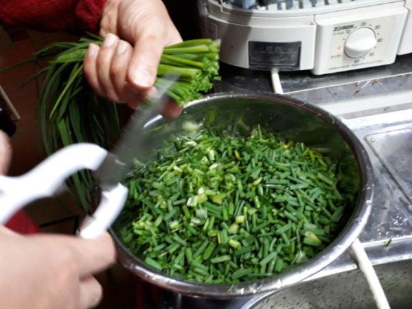 家庭菜園のネギ属を全て収穫&食べるネギラー油も自作。