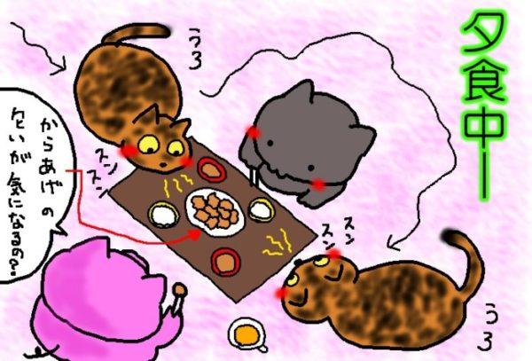 猫とアルコールの関係【サビ猫しめじの受難】