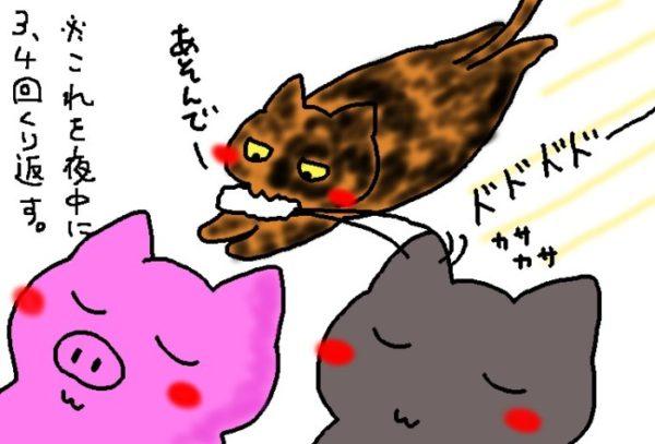 真夜中のサビ猫しめじ。