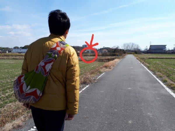 田んぼ道を散歩中にヤギがいた