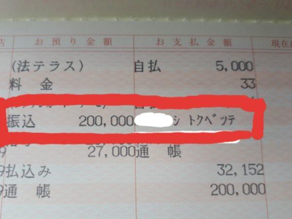 コロナの給付金で、トゥルースリーパーを買ってみた。
