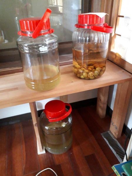 母自家製の梅酒と梅ジュース
