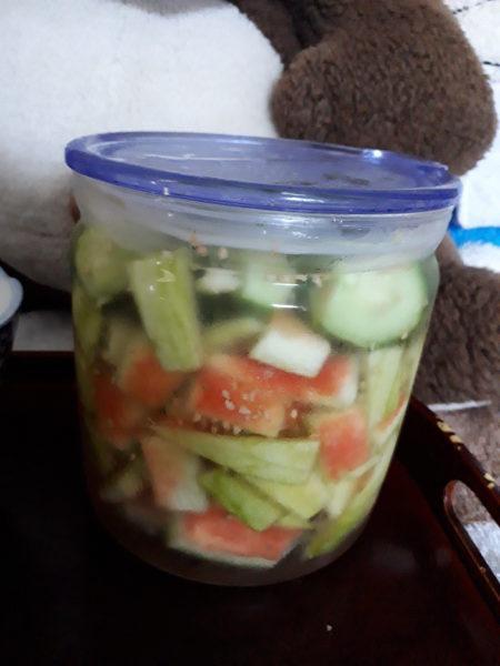 夏バテ予防に、体が酸っぱいものを求めてる(;・∀・)【プランターで夏野菜栽培】
