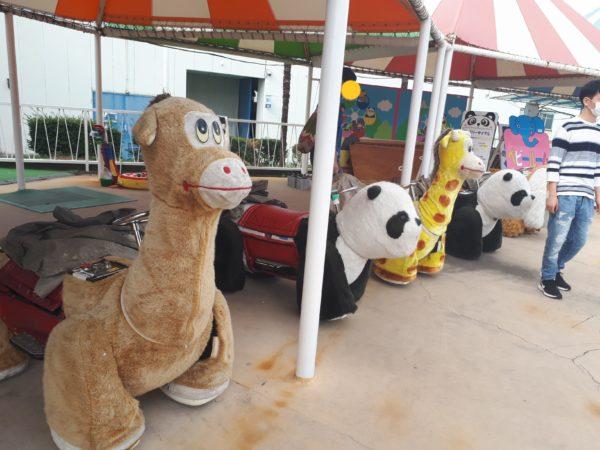 ひめじ手柄山遊園のチャリティーに申込みしてみた、バッテリーカー、パンダ、キリン