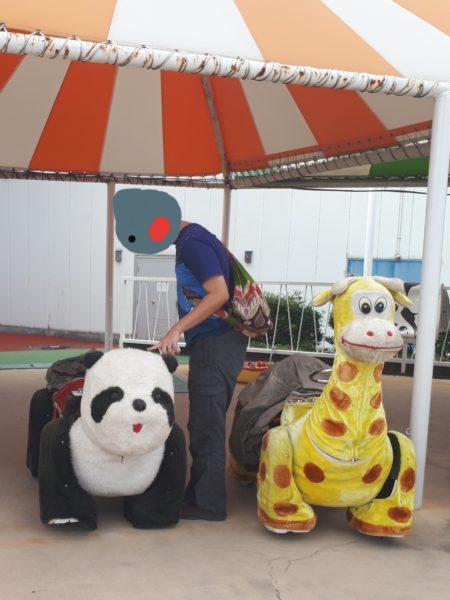ひめじ手柄山遊園のチャリティーに申込みしてみた、パンダのバッテリーカー