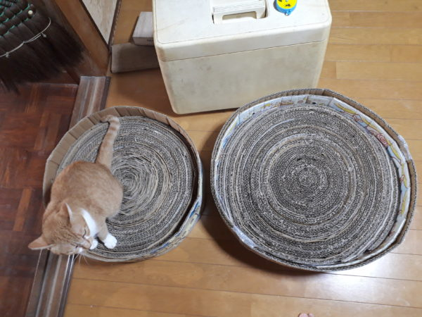 DIY.段ボール箱を切って巻いて、猫の爪とぎを手作りしてみた