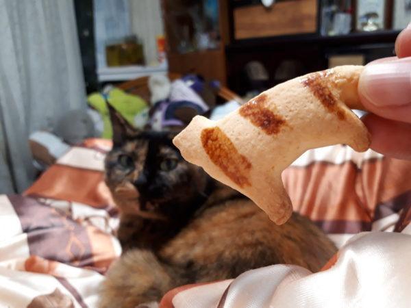 猫のいるお家にやってくる、猫な物たち 奈良県とらやの猫ボーロとサビ猫しめじ