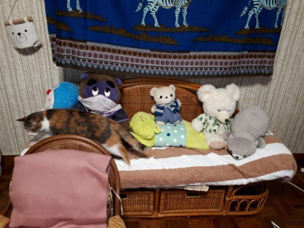 ぬいぐるみ、クマ、シロクマ、タヌキによる蜂蜜組
