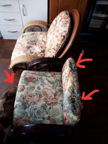 縞三毛猫なめこが爪とぎするから、座椅子がボロボロ