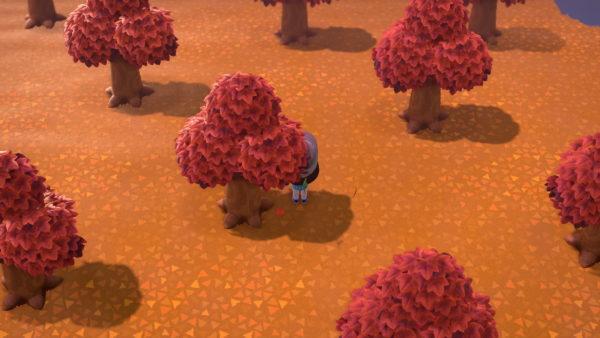 あつまれどうぶつの森、ぷっこプレイ画像