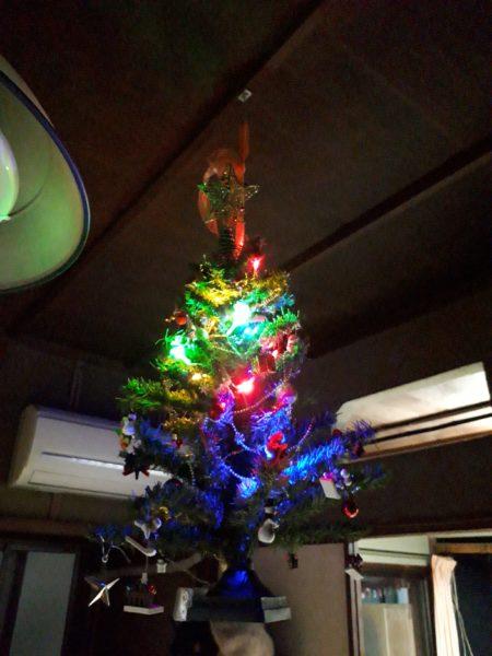 クリスマスツリーを猫避けに天井から吊るしてライトアップ