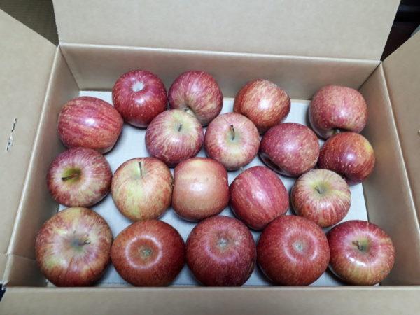 大量のリンゴをもらった時の田舎的消費の仕方