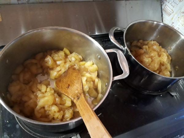 大量のリンゴをもらった時の田舎的消費の仕方甘党の為のアップルパイ