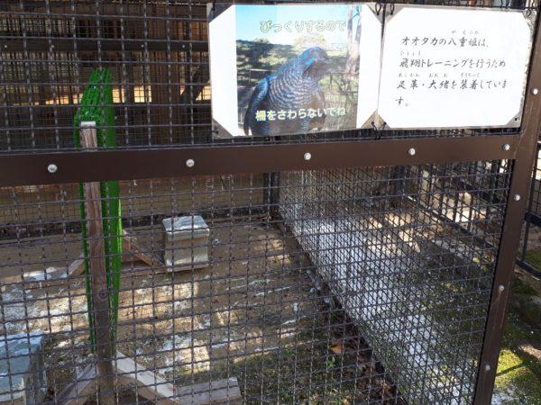 2021年お正月に姫路動物園に行ってきた