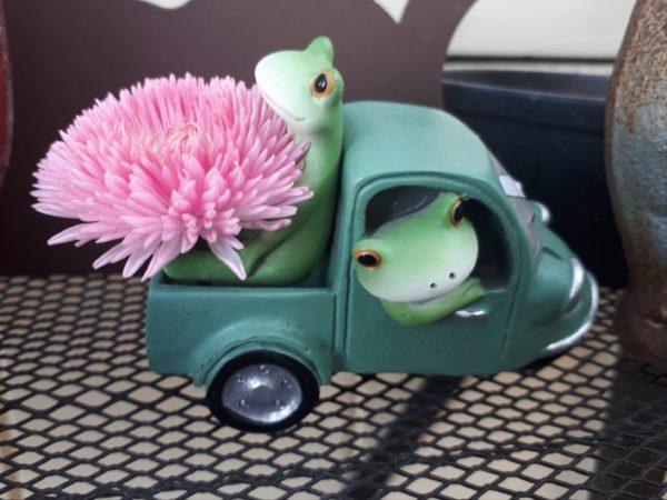チロリアンデイジーの花をトラックで運ぶカエル