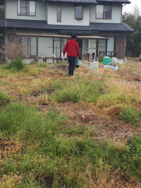 コロナ禍の帰省。やっぱりお家で過ごし隊、除草剤