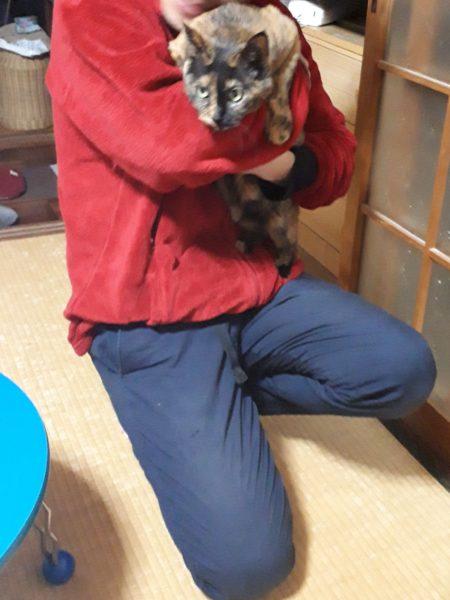父ちゃんに抱かれてにゅるんと出てくるサビ猫しめじ