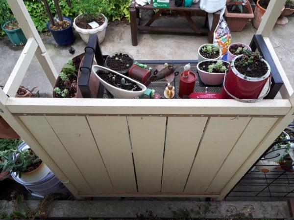 旦那がお庭にDIYした、木製のパーゴラのこと