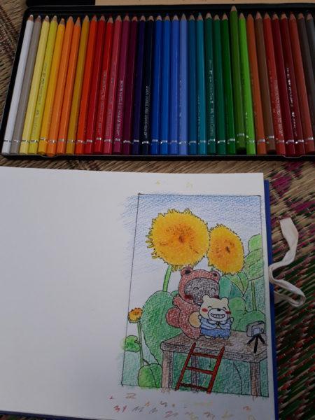 暑中見舞い、夏のイラスト、八重咲きのヒマワリを背景に自撮りするたぬきとシロクマ