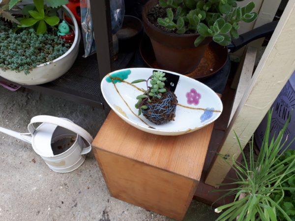 お気に入りは、お直しして長く使いたい②(ФωФ)b【割れたお皿を、レジンで金継ぎっぽく補修して植木鉢に】